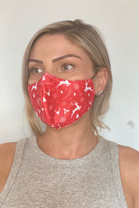 Christmas Face Mask Two