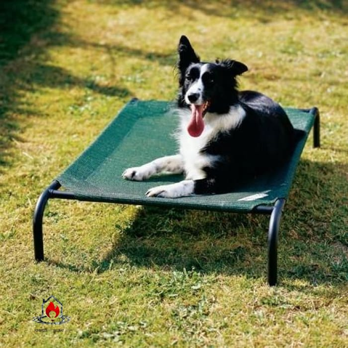Medium Elevated Indoor/Outdoor Dot Cot in Brunswick Green - Bedroom > Cat and Dog Beds