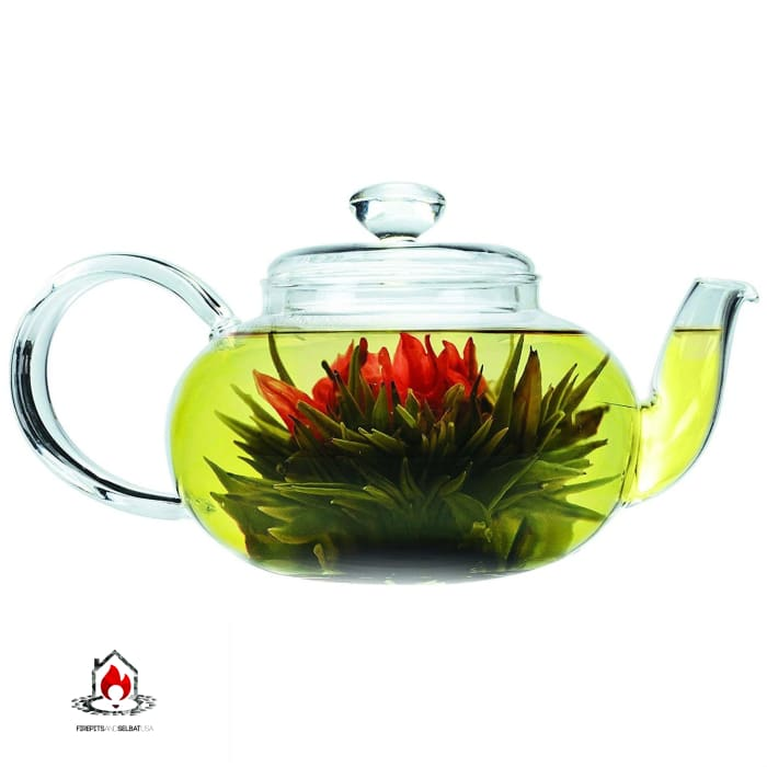 Stove-top Safe Brosilicate Glass Teapot 22 Oz with Infuser - Kitchen > Teapots