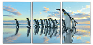 FRAMED ACRYLIC LARGE PICTURES - PENGUIN MARCH - SET OF 3