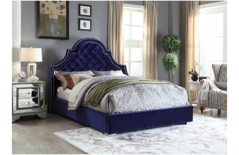 Dagwood Navy Bed