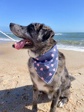 Load image into Gallery viewer, Lovely Lollipops Dog Bandana