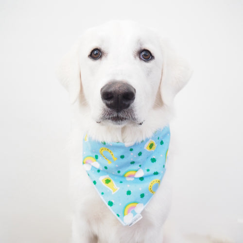 St. Patty's Day Bandanas