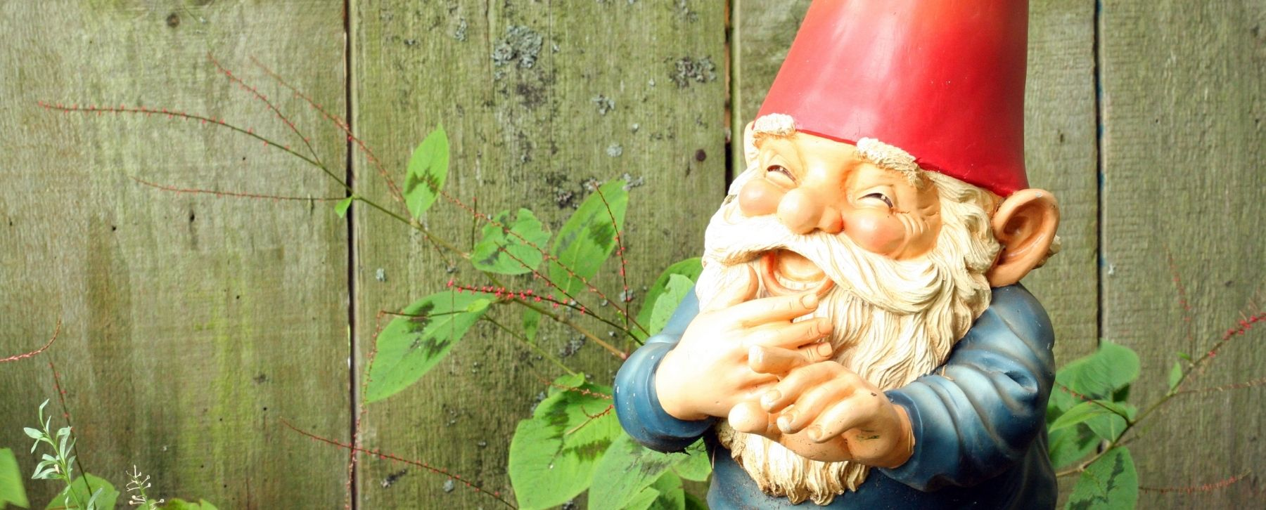 There's No Place Like Gnome with These Delightful Garden Pieces.