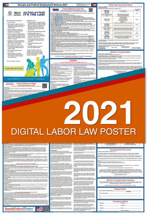 PREORDER - Georgia State and Federal Labor Law Poster 2021