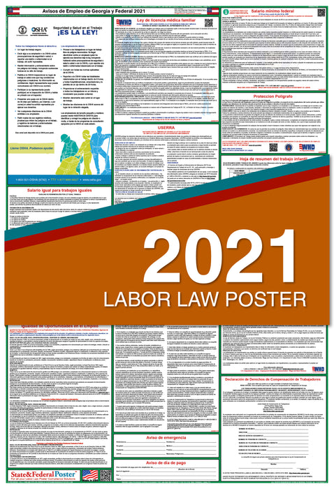 Georgia State and Federal Labor Law Poster 2021 (SPANISH)