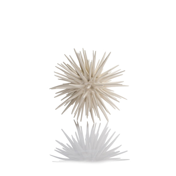 Medium Oly Sea Urchin Frost White Resin
