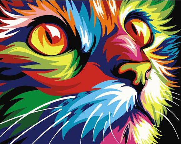 Absctract Cat DIY Painting By Numbers 40x50cm Box Set