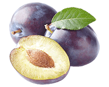 Plum Seed Extract