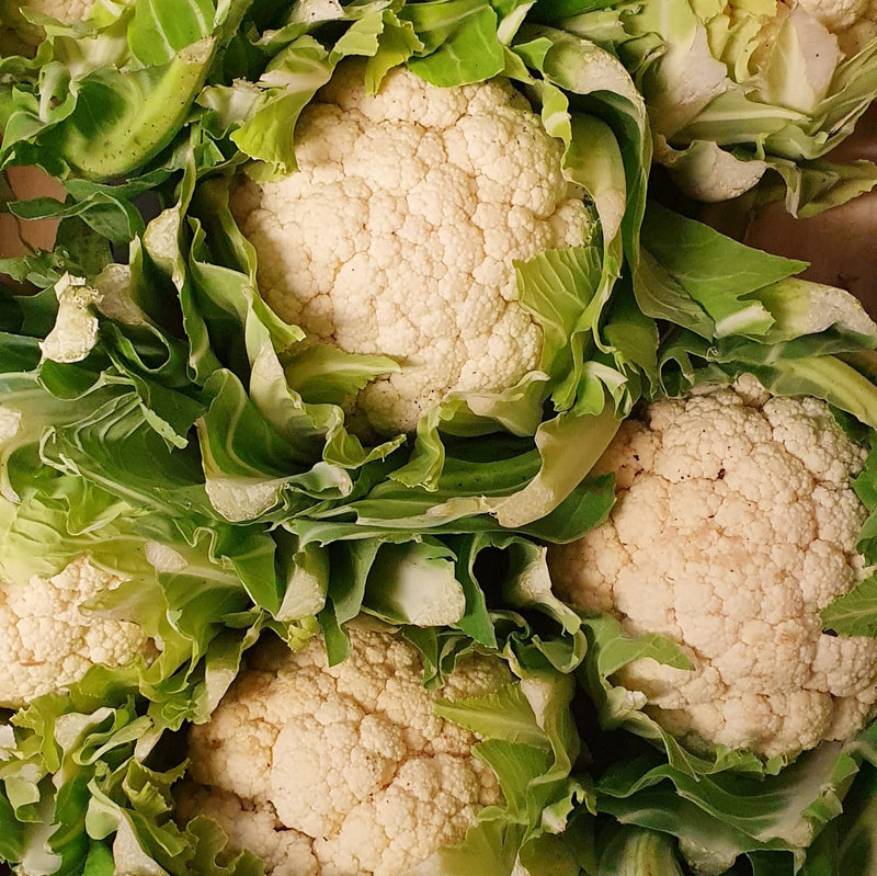Organic Cauliflower (Single)