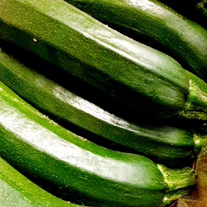 Organic Courgette (Twin Pack)