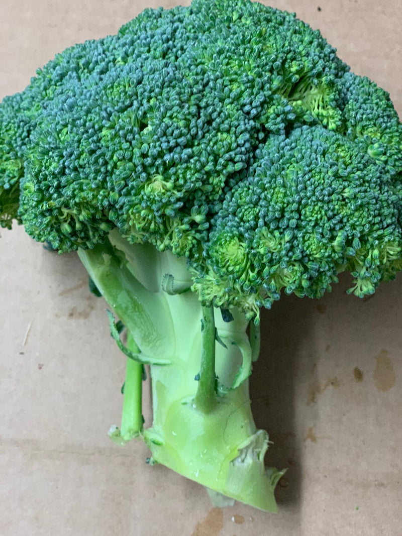 Picked For You Brocoli