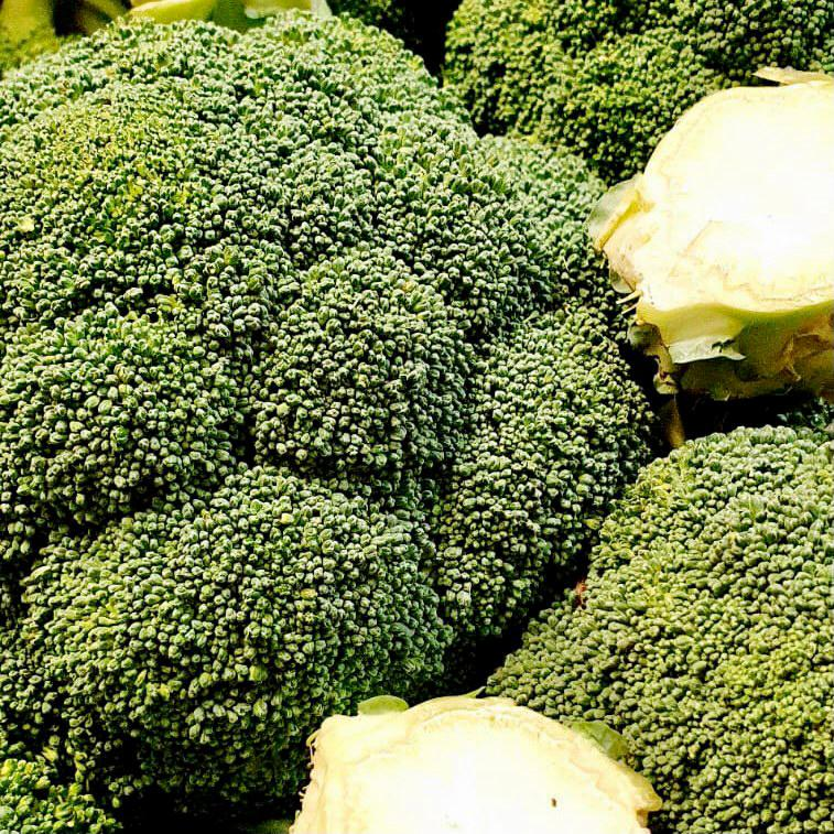 Organic Fresh Broccoli (Single)