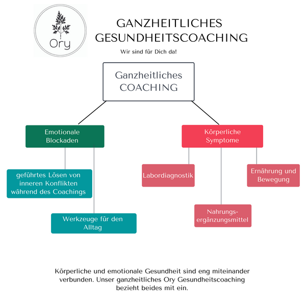 Coaching - ORY Gesundheitscoach Online