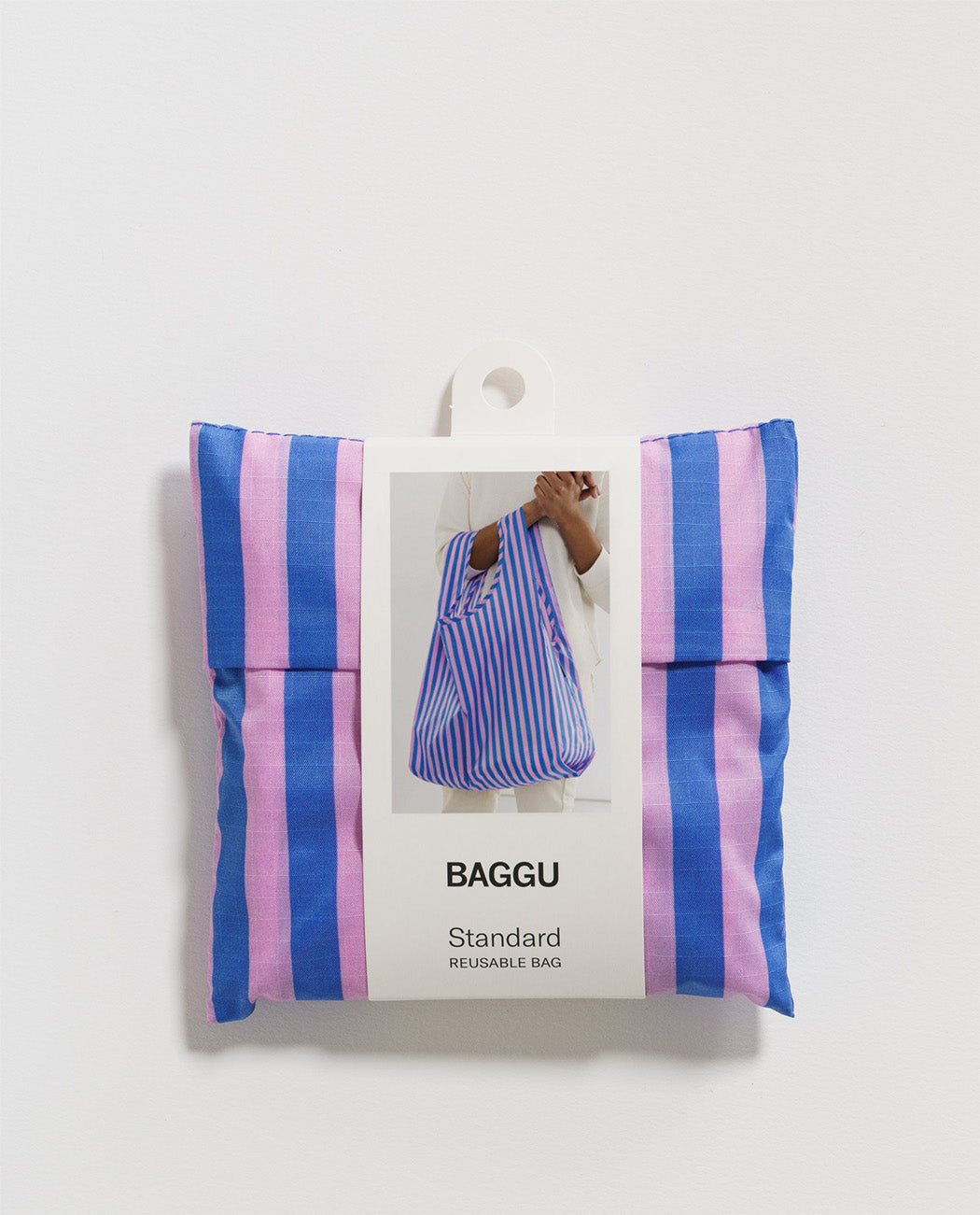 Standard Baggu Pink and Blue Stripe Utrecht Europe