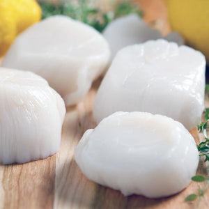 Scallops Roe Off 10/20 - Seafood Direct UK