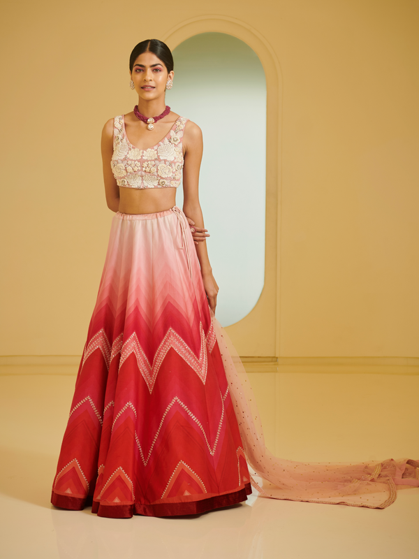 Embroidered Blouse With Highlighted Lehenga Set