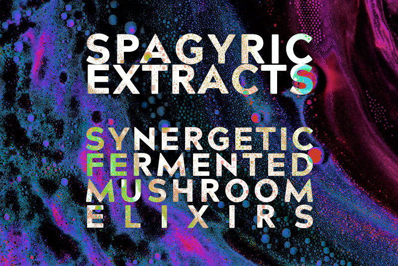 Spagyric Mushroom Extracts from Best Health Co Synergetic Fermented Elixirs