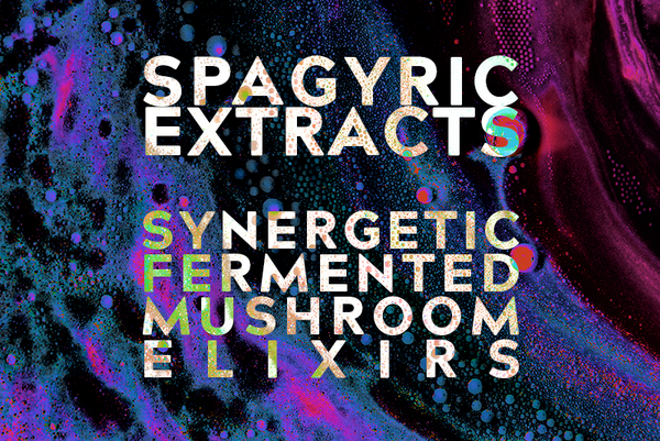 Spagyric Extracts: Synergetic Fermented Mushroom Elixirs