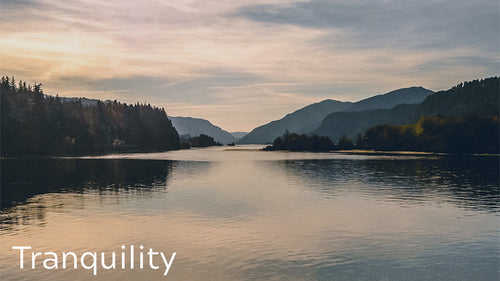 Tranquility – About us | Best Health Co