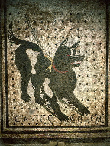 Cave Canem(beware of the dog), Mosaic 66 x 66 cm, I century B.C., from Pompeii, House of the Tragic Poet