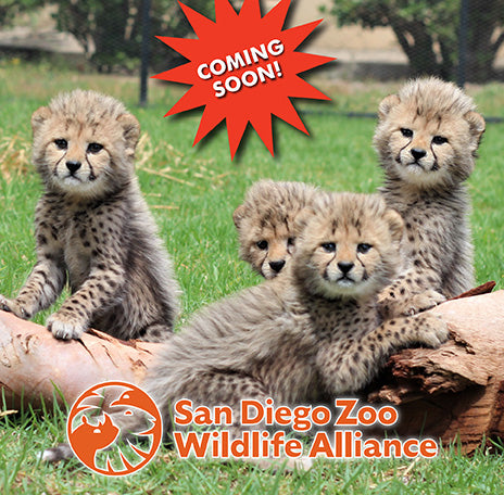 Cookie Club of America - San Diego Zoo Global
