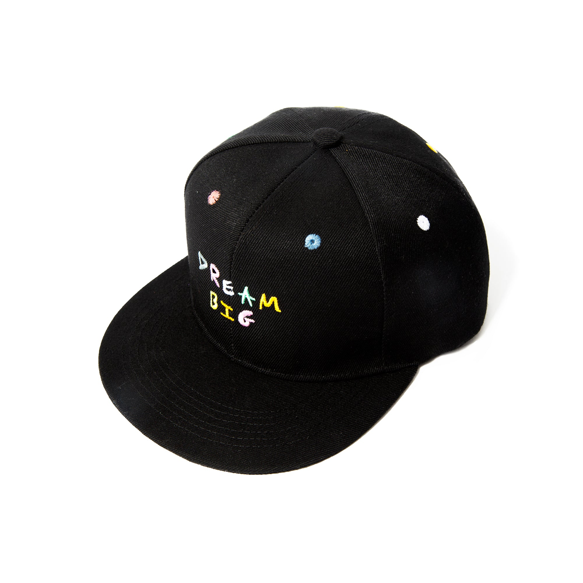 """Dream BIG Snapback"""