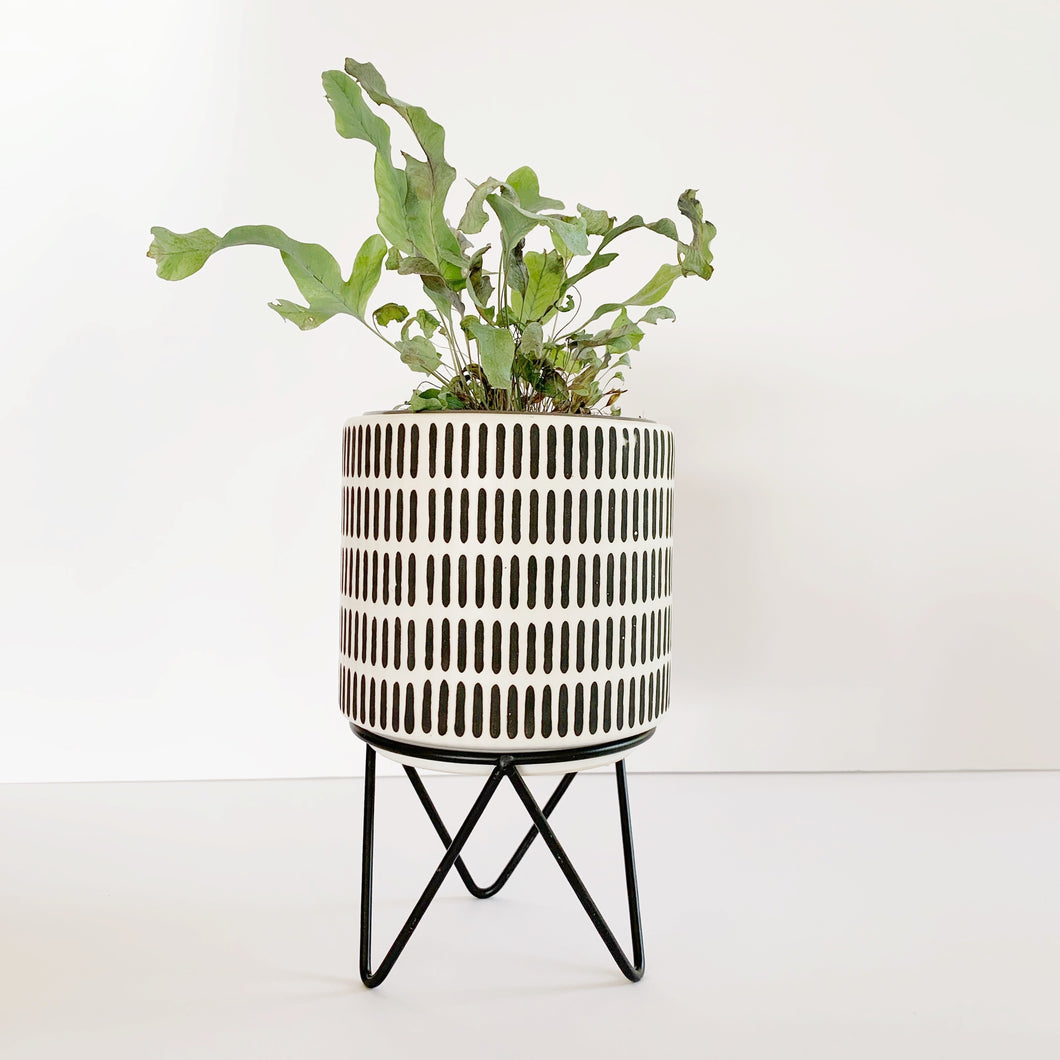 Black and White Planter with Stand