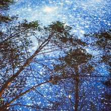 Load image into Gallery viewer, Starry Forest Tapestry