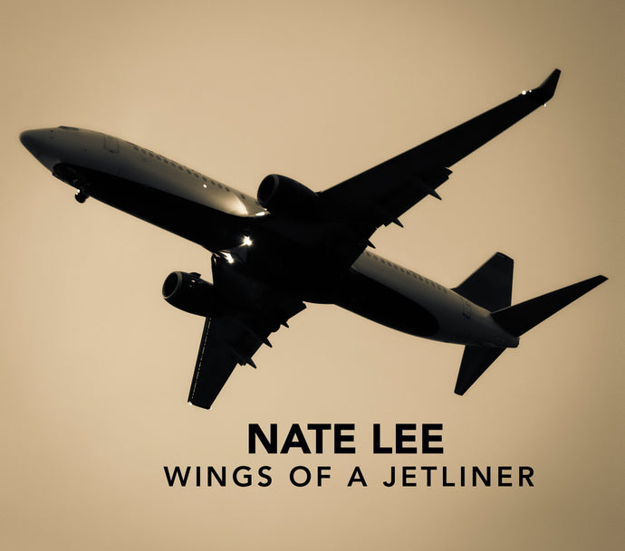 Wings of a Jetliner - CD