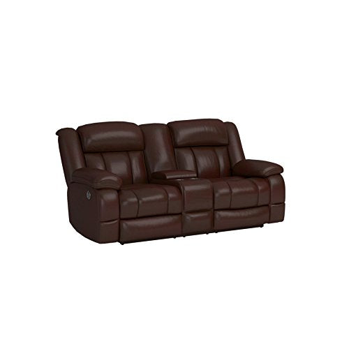 Furniture of America Rosamund Recliner Love Seat with Power-Assist System