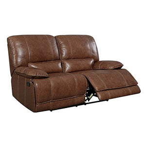 Furniture of America Evo Transitional Reclining Loveseat in Brown