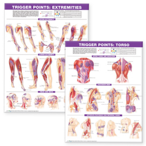 Trigger Point Chart Set: Torso & Extremities Paper