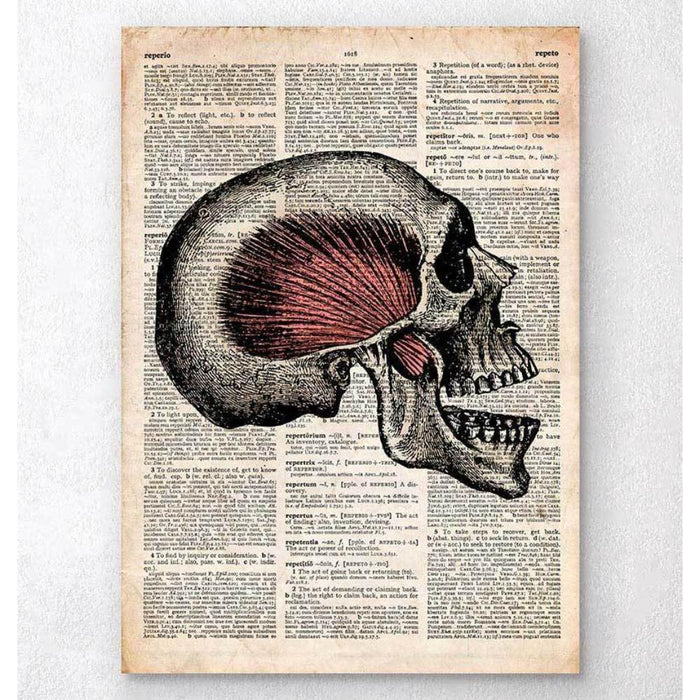 Skull Art Print Old Dictionary Page