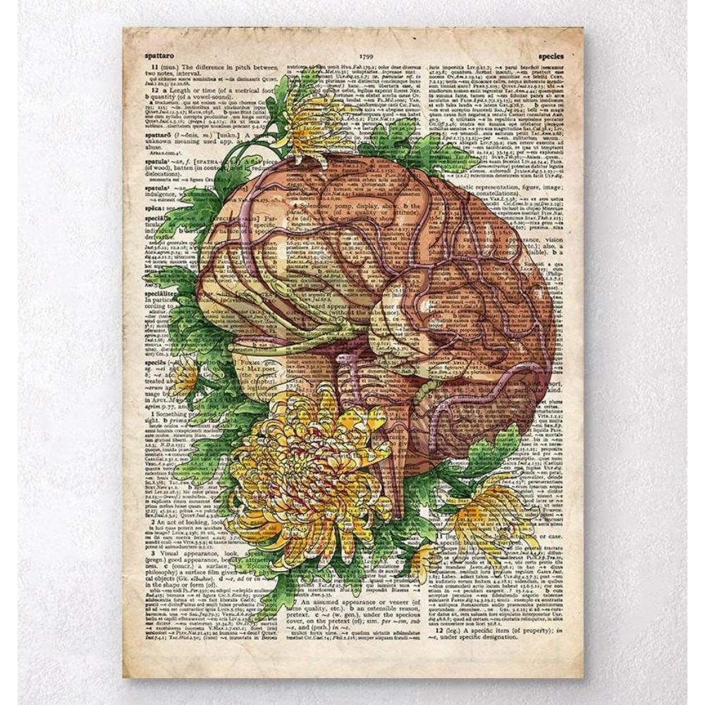 Brain With Flowers Old Dictionary Page
