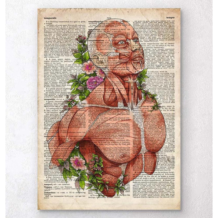 Male Body Anatomy Art Old Dictionary