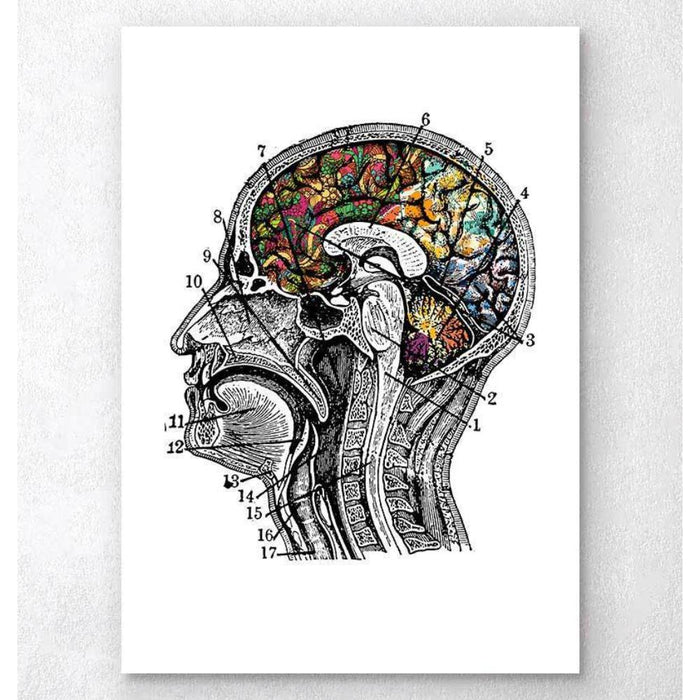 Floral Brain Art White Background