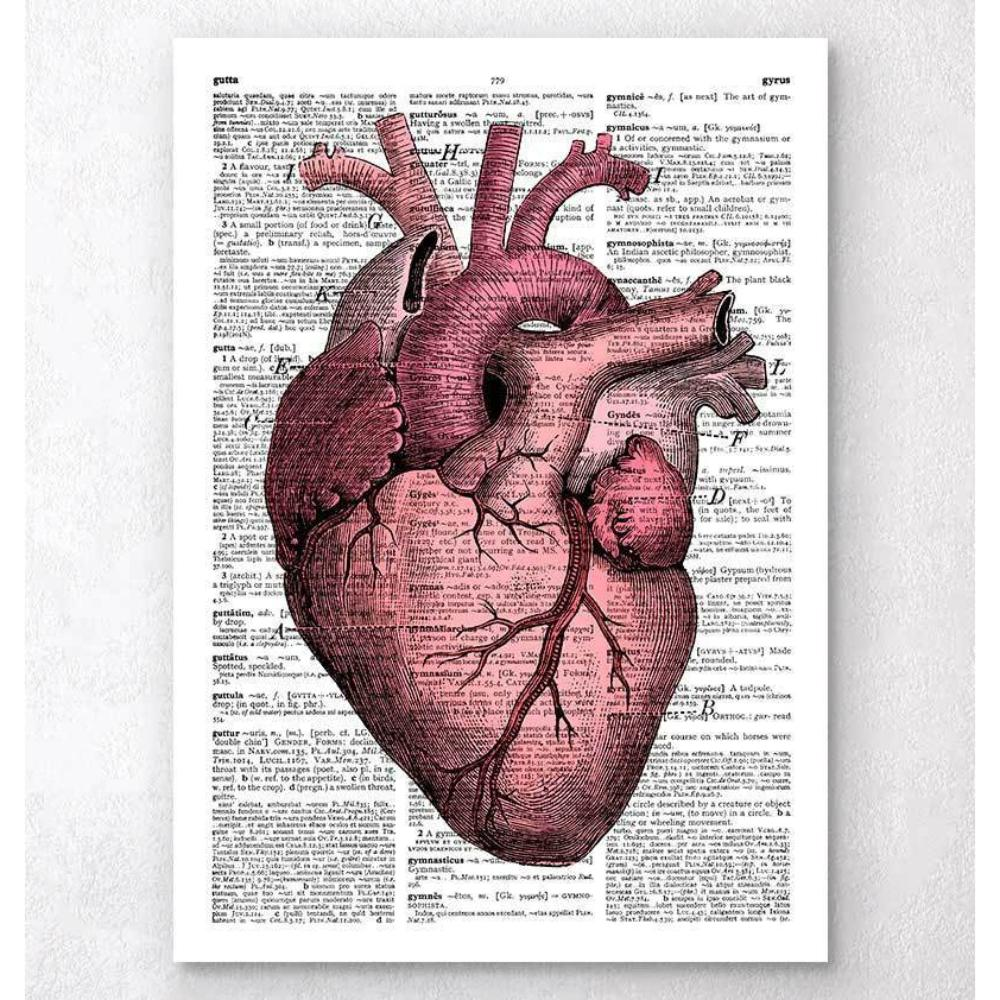 Heart Anatomy III Dictionary Page