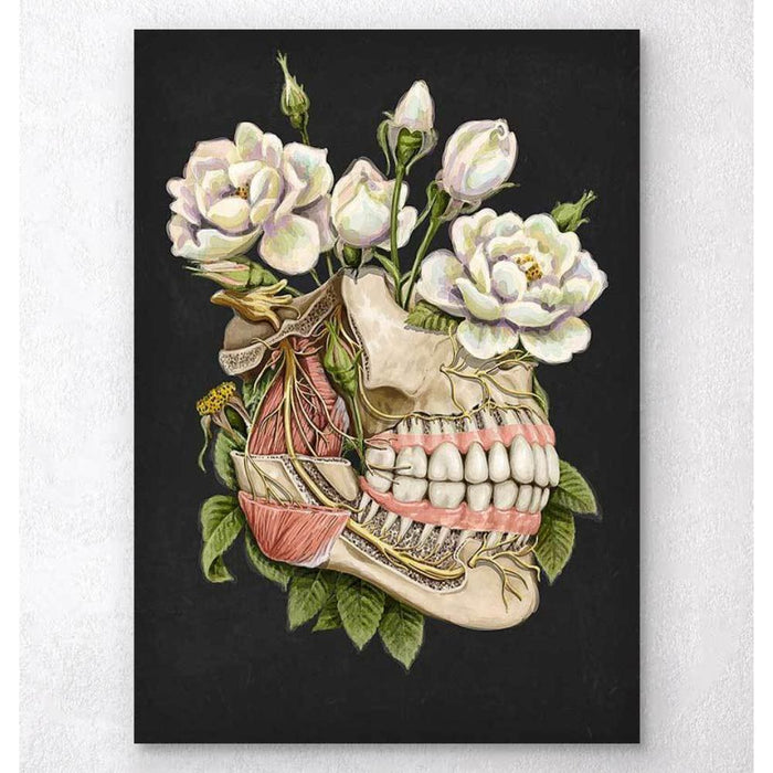 Dental Anatomy Floral Black