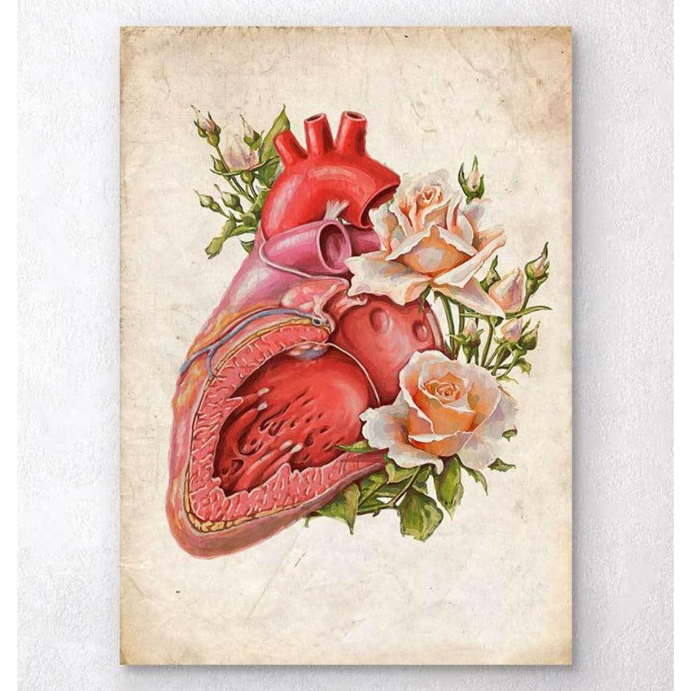 Heart Anatomy Floral Old Paper
