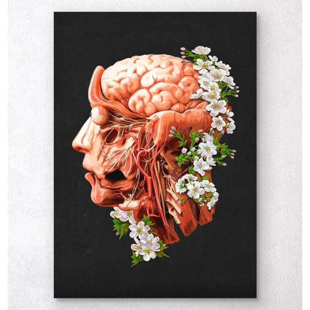 Head, Brain And Arteries Anatomy Floral Black