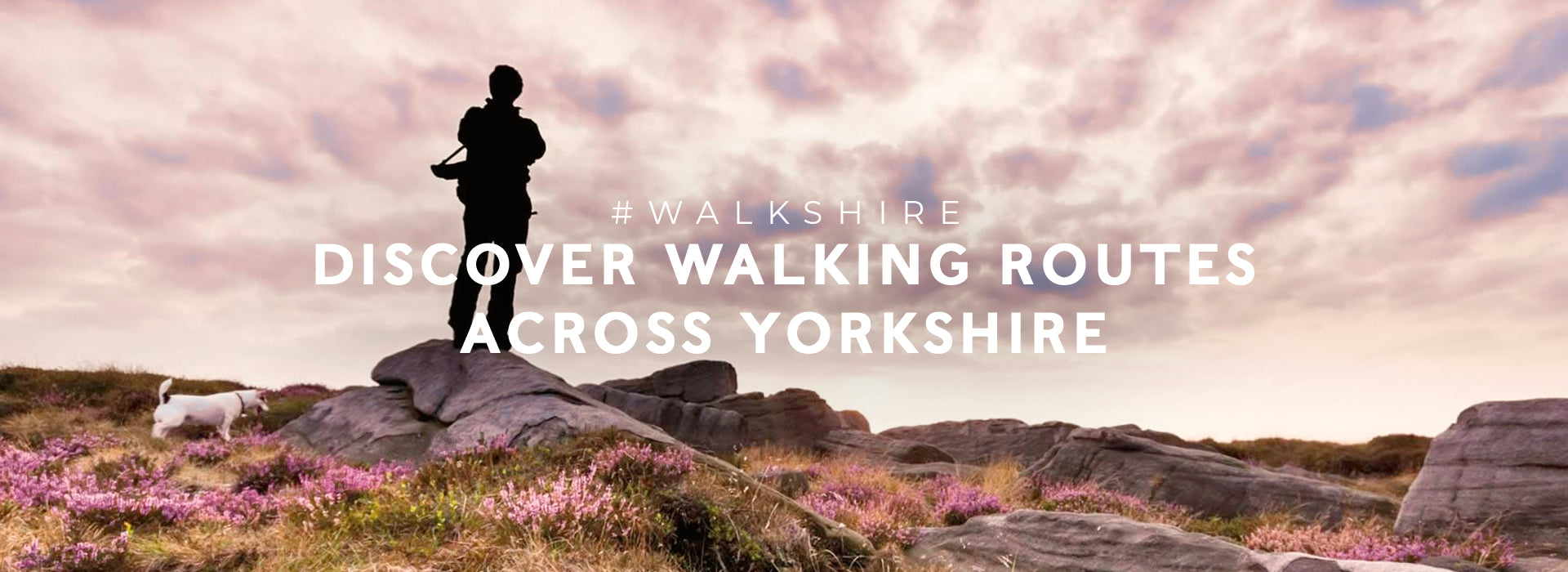 Discover walking routes across Yorkshire