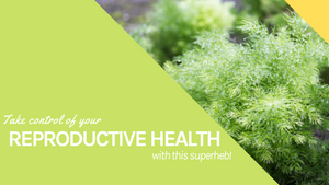 Take Control Of Your Reproductive Health With This Superherb!