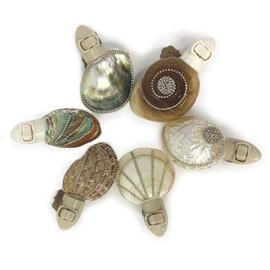 Accessories Embellished Sea Shell Night Lights