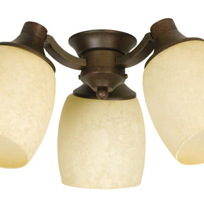 Craftmade Woodward 3 Light Kit with Antique Scavo Glass LK47CFL