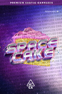 Custom Mylar Bag - Space cake