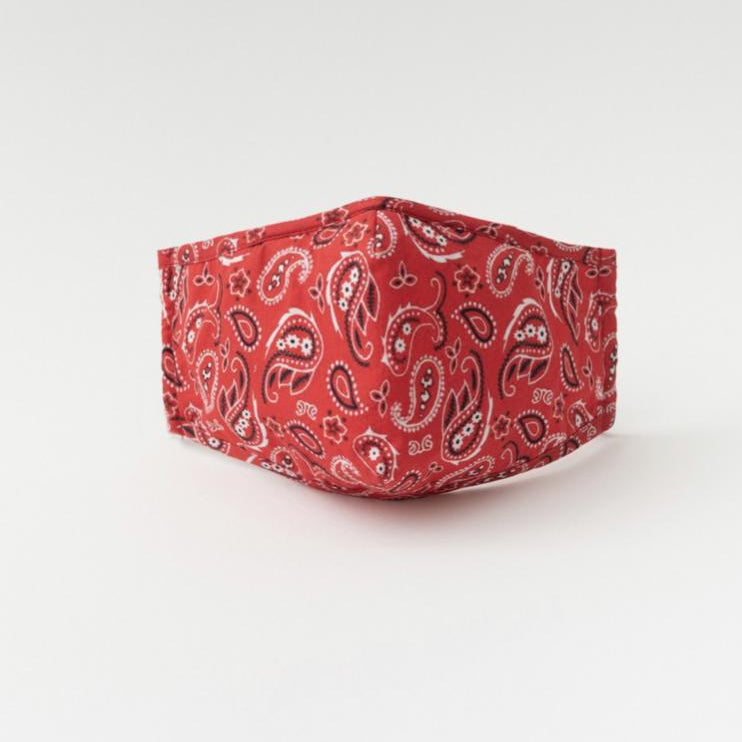 Red Paisley Print Face Mask - alliemdesignsboutique