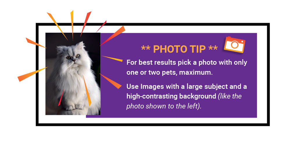 PHOTO PRO TIP - For best results, pick a photo with only one or two pets, maximum. Use images with a large subject and a high-contrasting background (like the photo shown to the left).