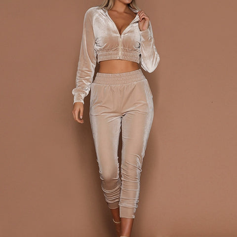 Two Piece Cropped Hoodie and Joggers