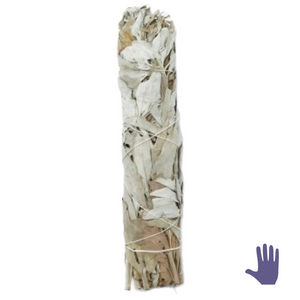 CLEANSE White Sage Smudge